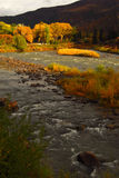 Colorado river. The mighty Colorado river in fall Stock Image