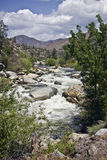 Colorado river. In the USA. Vertical shot Stock Images