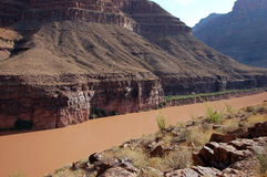 Colorado River. Grand Canyon National Park in the USA Royalty Free Stock Image