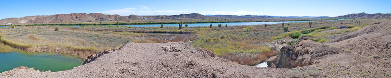 Colorado River, Arizona  - Panorama Stock Photography