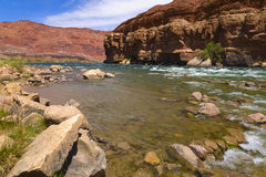 Colorado River Bank. Image of the Colorado river from the banks of Lees Ferry Stock Images