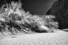 Colorado River Beach Royalty Free Stock Images