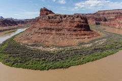 Colorado River in Canyonlands N. P. Royalty Free Stock Image