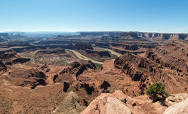 Colorado River from Dead Horse Point. Panoramic view of the Canyonlands of Utah from Dead Horse Point State Park Royalty Free Stock Image