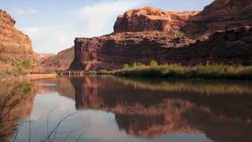 Colorado River Flowing Shore Utah Wilderness stock video