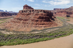 Colorado River Flows Through Canyonlands N. P. Royalty Free Stock Images