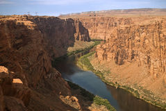 Colorado River Gorge. This is a picture of the Colorado River in Northern Arizona royalty free stock image