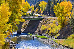 Colorado River. Gorgeous golden autumn and Colorado river Stock Photos