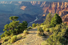 Colorado River, Grand Canyon Royalty Free Stock Photo