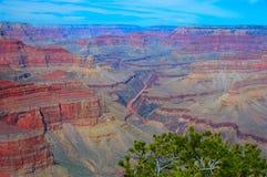 Colorado river in Grand canyon Royalty Free Stock Photos