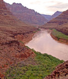 Colorado River in the Grand Canyon Royalty Free Stock Image