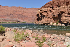 Colorado River at Lee's Ferry Stock Photos