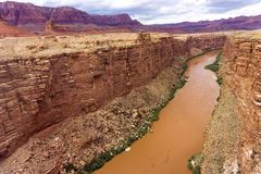 Colorado River and Marble Canyon. Beautiful view of the Colorado River and Marble Canyon in Arizona Royalty Free Stock Photos
