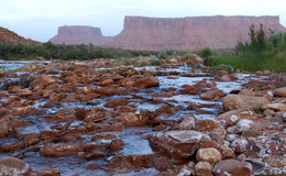 Colorado River, Moab, Utah, USA. Colorado River flowing over rocks near Moab, famous for whitewater rafting, Utah, USA Stock Image