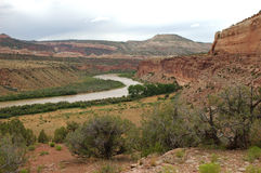 Colorado River Near Loma. Colorado. View from Rustler's Loop mountain bike trail Royalty Free Stock Images