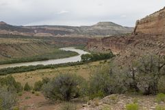 Colorado River Near Loma. Bend in the Colorado river as it flows between desert cliffs near the Utah border Stock Images