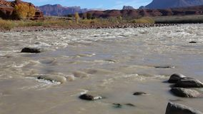Colorado River in Rocky Rapid stock video footage