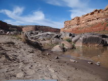 Colorado River Scene with Red Rocks Royalty Free Stock Photo