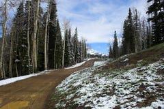 Colorado Road Stock Photo