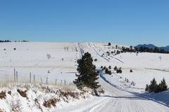 Colorado road Royalty Free Stock Photo