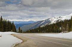 Colorado road surrounded with snow Stock Image