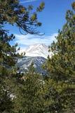 Colorado Rockies Stock Image