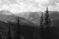 Colorado Rockies Stock Foto