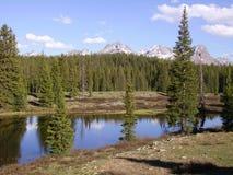 Colorado Rockies Arkivbilder