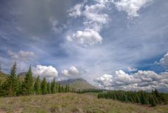 Colorado Rockies on the Colorado Trail near Little Molas Lake. This photo was captured on the Colorado Trail at approximately 12,000 feet of elevation, near Royalty Free Stock Photo