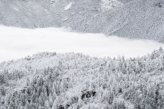 Colorado rockies frozen snow winter landscape Royalty Free Stock Photo