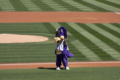 Colorado Rockies Mascot Stock Photos
