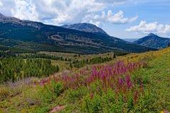 Colorado Rockies sur la traînée du Colorado près du petit lac Molas Photographie stock libre de droits