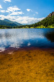 Colorado Rocky Mountain Lily Lake stock photography