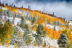 Colorado Rocky Mountain Snowy Autumn Colors. A snowy Colorado scenic landscape of a fresh dusting of snow in the high country of the Rocky Mountains in Summit stock photography