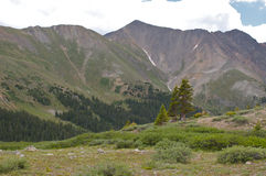 Colorado Rocky Mountains. A scenic landscape in the Colorado rockies along the continental divide Stock Photography