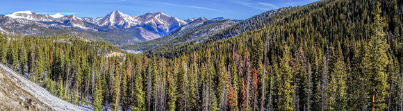 Colorado rocky mountains near monarch pass Stock Photography