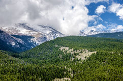 Colorado Rocky Mountains. Scenic view of the snow caped Colorado Rocky Mountains and forest royalty free stock photo