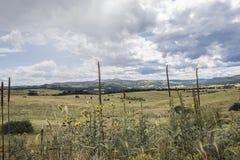 Colorado Rocky Mountians Imagens de Stock
