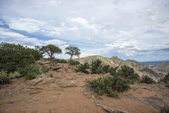 Colorado Rocky Mountians Fotografia Stock