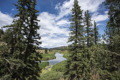 Colorado Rocky Mountians Royalty Free Stock Image