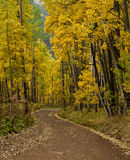 Colorado's Ophir Pass Road Stock Image