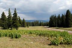 Colorado scenery Stock Photo