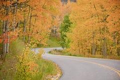 colorado sezon jesienny Zdjęcie Royalty Free