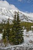 Colorado snöig landskap Royaltyfri Foto