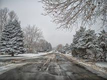Colorado snöig väg fotografering för bildbyråer
