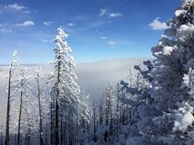 Colorado snow in the Rocky Mountains Royalty Free Stock Photo