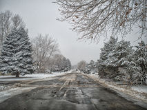 Colorado Snowy Road Stock Image
