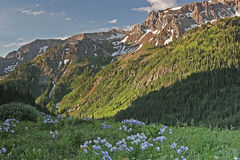 Colorado sommar i Sanen Juan Mountains Royaltyfri Foto