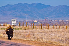 Colorado Speed Trap Royalty Free Stock Images