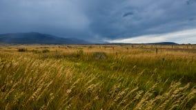 Colorado Springs. Wide open range in Alamosa County, Colorado Stock Photo